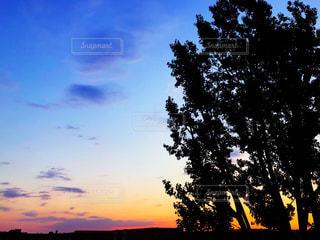 自然,風景,空,夕日,世界の絶景,旅行,ドイツ,ベルリン,夕陽,サンセット
