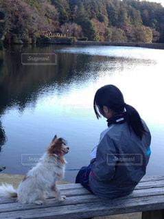 私と犬の写真・画像素材[2047005]