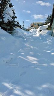 雪の道の写真・画像素材[2816155]