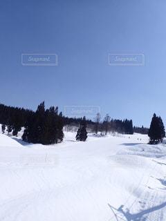 上越国際スキー場の写真・画像素材[2817266]