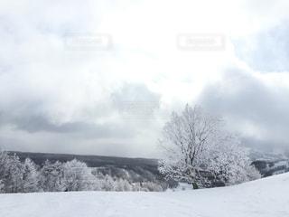 菅平スキー場の写真・画像素材[2817281]