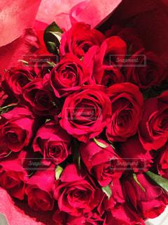 バラの花束の写真・画像素材[1949071]
