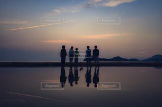 夕焼けの上に座っている鳥の群れの写真・画像素材[2335553]