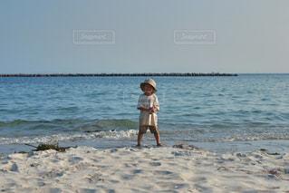 海日和の写真・画像素材[2328575]