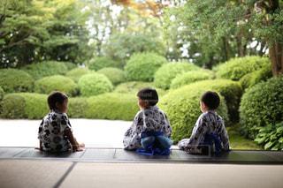 後ろ姿,人物,浴衣,日本,日本家屋,少年,息子