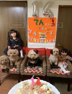 犬ファミリー 孫 クリスマス お父さん 誕生日 ケーキ ハッピー