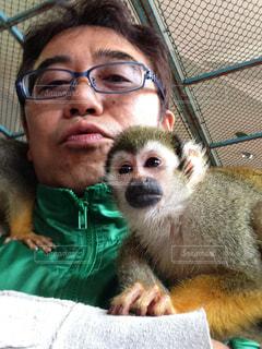 お互いに抱き合う猿の写真・画像素材[2281746]