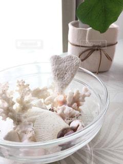 リビング,屋内,緑,白,サンゴ,部屋,家,テーブル,ハート,珊瑚,お皿