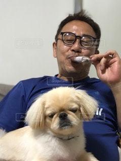 カメラのポーズをとる男と犬の写真・画像素材[3359550]