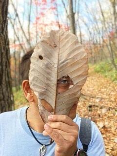 落ち葉の面をつけた男性の写真・画像素材[3713431]