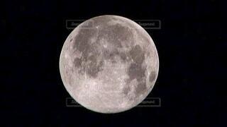 満月の写真・画像素材[3919784]