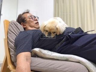 ベッドの上に犬を連れた人の写真・画像素材[4016241]