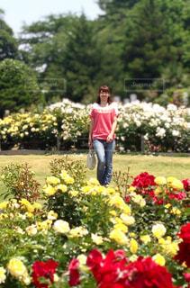 野原に花を持った少女の写真・画像素材[4330442]
