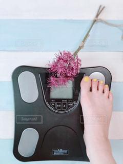 体重計の写真・画像素材[2333705]