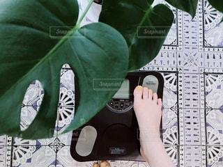 体重計の写真・画像素材[2333798]