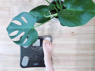 体重計の写真・画像素材[2333802]