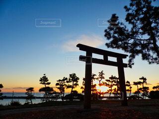 風景,海,空,屋外,太陽,神社,夕暮れ,鳥居,海岸,光,樹木