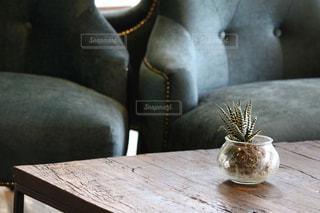 自然,インテリア,茶色,草,テーブル,ソファ,ベージュ,木目,多肉植物,ミルクティー,座席,おしゃれ,おしゃれカフェ,ミルクティー色,スティル ・ ライフ