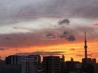 都内の夕日の写真・画像素材[3443320]