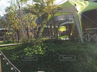 庭のクローズアップの写真・画像素材[2405138]