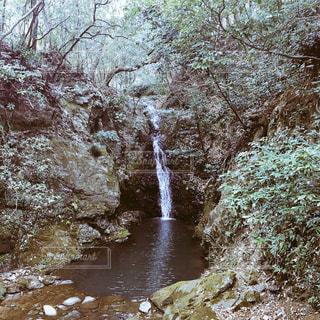 背景の木と滝の写真・画像素材[1043544]