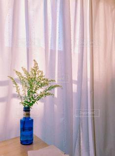 花,植物,青,フラワー,黄色,茶色,カーテン,窓辺,ボトル,ベージュ,夕暮,ミルクティー色,ソリダコ