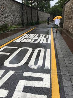 雨,傘,屋外,後ろ姿,道路,観光,道,韓国,梅雨,雨降り,ソウル,路,黄色い傘