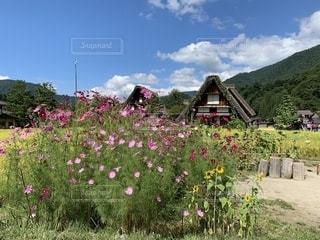 白川郷での休日の写真・画像素材[2441852]