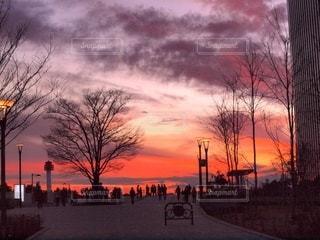 お台場公園の夕焼け1の写真・画像素材[3398968]