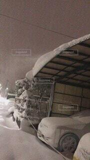 夜,屋内,雪,東京,ガレージ,大雪,真冬,吹雪