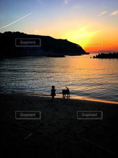 sunsetの写真・画像素材[2014759]