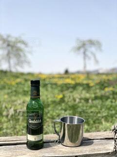 空,屋外,ボトル,ビール,ドリンク
