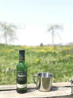 空,屋外,草,ボトル,ビール,ドリンク