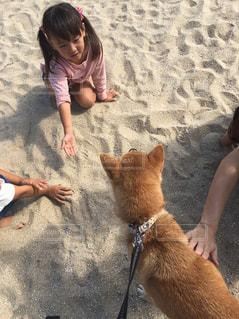 砂場でお遊びの写真・画像素材[2011811]
