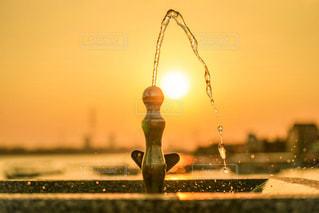 夕日,屋外,水,水滴,雫