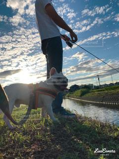 男性,家族,犬,空,動物,フレンチブルドッグ,夕焼け,散歩,川,いぬ,人,釣り,わんちゃん,40代