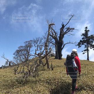風景,空,緑,草原,山,人物,人,ハイキング