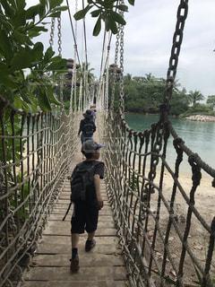 吊り橋渡って行こう!の写真・画像素材[2214994]