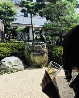 鵜匠の喫茶店の写真・画像素材[2274109]