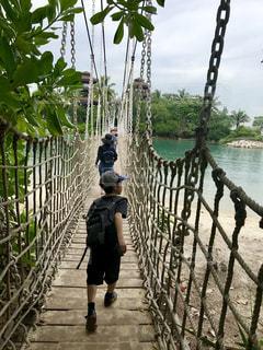 吊り橋渡って冒険だぁ!の写真・画像素材[2514327]
