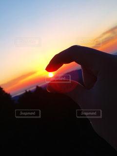 自然の写真・画像素材[2031205]