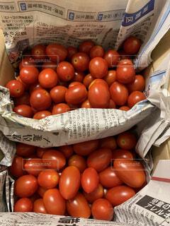 食べ物,赤,トマト,野菜,ミニトマト,食品,プチプチ,食材,フレッシュ,ベジタブル,フルーツトマト