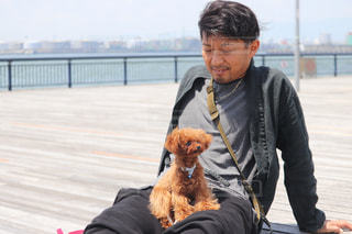 家族,犬,春,桜,動物,ランチ,屋外,人物,仔犬,プードル,トイプードル,お散歩,ティーカッププードル
