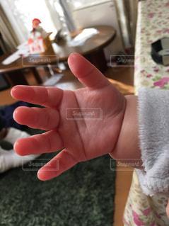 むちむちの手の写真・画像素材[2005834]