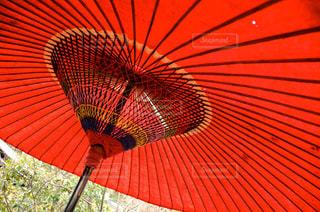 赤い傘の写真・画像素材[2179892]