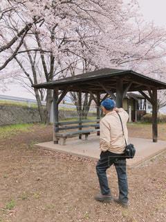 公園の写真・画像素材[2067417]