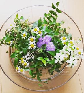 花の写真・画像素材[2005219]