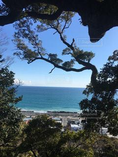海の青と空の青の写真・画像素材[2014000]