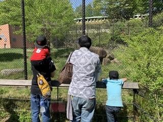 父と三兄弟 三男初めての動物園の写真・画像素材[2221145]