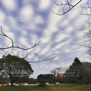3Dな雲の写真・画像素材[2017638]
